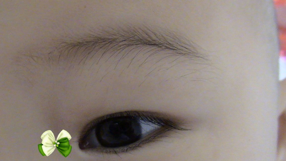 眼睛结构正面示意图
